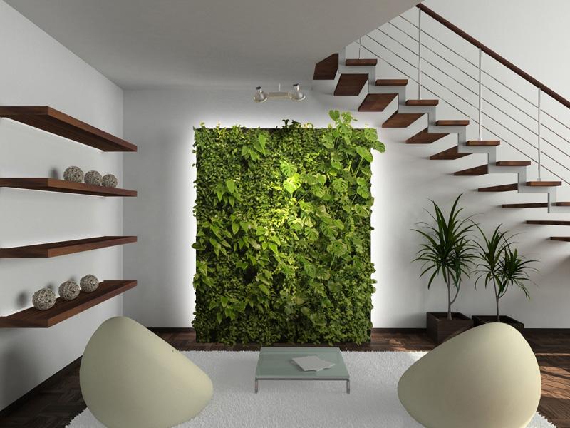 Вертикальное озеленение (фитопанно с автоматической системой полива)