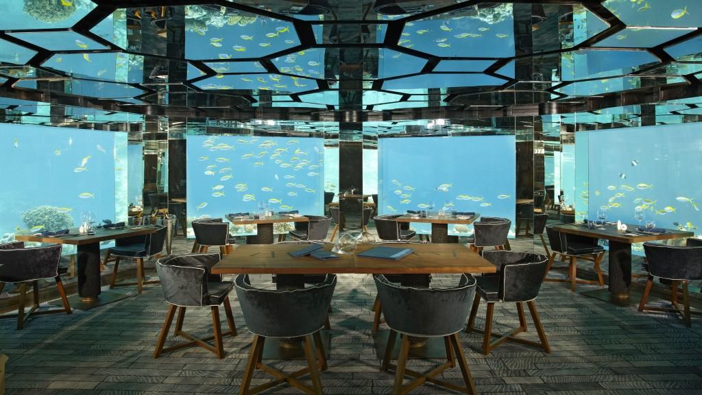 Фишка дизайна интерьера этого ресторна - огромные аквариумы с тропическими рыбками. Стоит ли озвучивать цифру, которая потрачена на это?Думаем, всем и так ясно. Однако, нерентабельным его назвать сложно